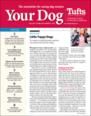 Your Dog May 01, 2021 Issue Cover