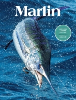 Marlin | 3/2020 Cover