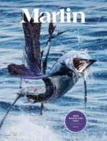 Marlin | 11/1/2020 Cover