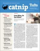 Catnip | 5/1/2021 Cover