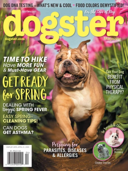 Dogster | 4/1/2020 Cover