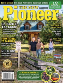 The New Pioneer | 1/2021 Cover