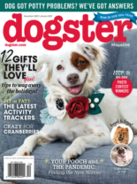 Dogster December 01, 2020 Issue Cover