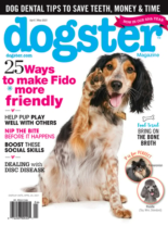Dogster April 01, 2021 Issue Cover