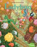 Ladybug | 9/1/2020 Cover