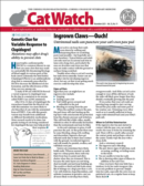 Catwatch November 01, 2021 Issue Cover