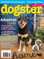 Dogster August 01, 2021 Issue Cover