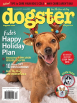 Dogster | 12/1/2019 Cover