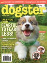Dogster | 8/1/2019 Cover