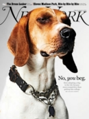 New York Magazine July 19, 2021 Issue Cover