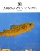 Arizona Wildlife Views May 01, 2021 Issue Cover