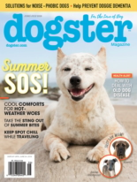 Dogster | 6/1/2019 Cover