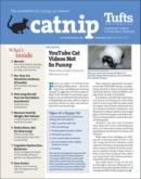 Catnip November 01, 2021 Issue Cover