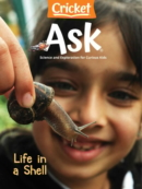 ask July 01, 2021 Issue Cover