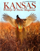 Kansas Wildlife & Parks | 11/1/2020 Cover