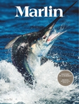 Marlin | 6/1/2020 Cover