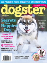 Dogster February 01, 2021 Issue Cover