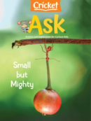 ask | 4/1/2021 Cover