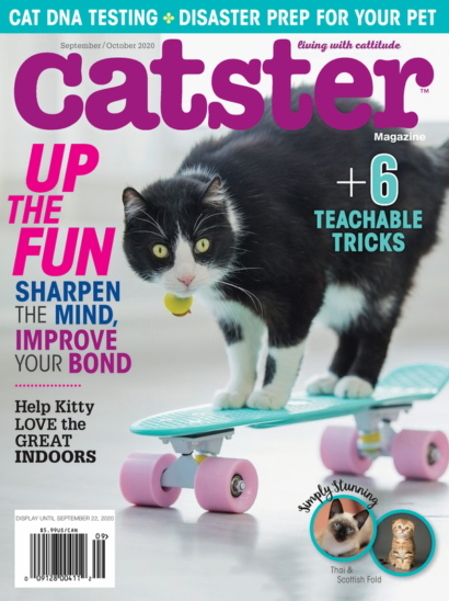 Catster | 9/1/2020 Cover