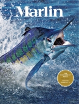 Marlin | 4/1/2020 Cover