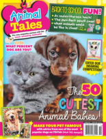 Animal Tales | 10/1/2020 Cover