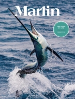 Marlin March 01, 2021 Issue Cover