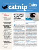 Catnip | 7/2020 Cover