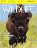 National Wildlife August 01, 2021 Issue Cover