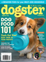 Dogster | 4/1/2019 Cover